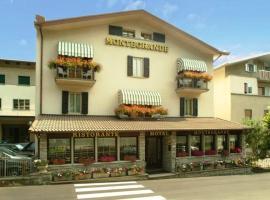 Hotel Montegrande, hotel in Vidiciatico
