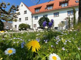 Hotel Montfort-Schlössle, hotel in Lindau