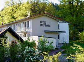 Busses Guesthouse, hotel near Schwarzwald Stadium, Freiburg im Breisgau