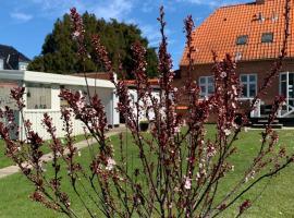 H. C. Lumbyes Vej - kælderlejlighed, lejlighed i Odense