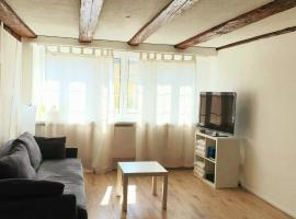 Cozy apartment close to Zurich Airport and City, apartment in Oberglatt