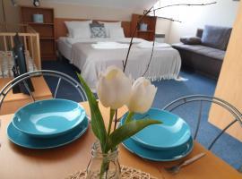 Hotel Modrásek, hotel in Kašperské Hory