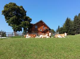 Ferienhaus Bichlhütte, Hotel in der Nähe von: Galsterbergalmlift, Pruggern