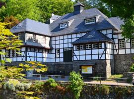 Villa Rur, holiday home in Monschau