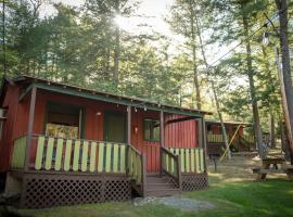 Forest Hill Lodging, motel in Lake George