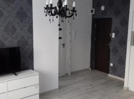Apartament LUX w centrum Konina, apartment in Konin