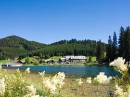 Hotel Teichwirt, hotel near Baerenschuetzklamm, Fladnitz an der Teichalm