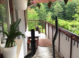 Apartament Gratiela, room in Băile Govora