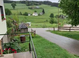 Schwarzwaldblick, דירה בטיטיזי-נוישטאדט