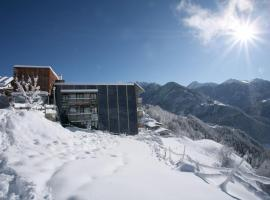 Hotel Pension Geiger, pet-friendly hotel in Serfaus