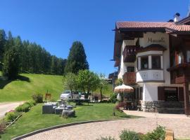 Appartamenti Hacoli, apartment in Selva di Val Gardena