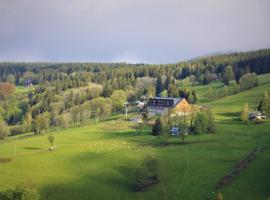 horský hotel Lovčenka, hotel near Kamienczyka Waterfall, Rokytnice nad Jizerou