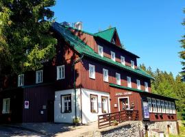 Hotel Děvín, отель в городе Пец-под-Снежкой