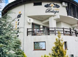 Pensiunea Beluga, hotel in Murighiol