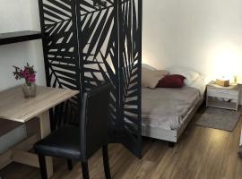 Magnifique studio coeur Vieil Antibes, pet-friendly hotel in Antibes