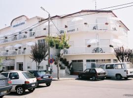 Hotel Primavera, hotel in Monte Real
