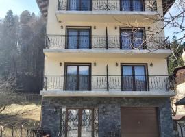 FULG DE NEA, guest house in Sinaia