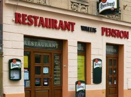 Pension Wallis, penzion v Plzni