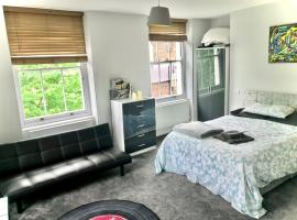 Camden Large 2 Bedroom Flat Guest House, bed & breakfast a Londra