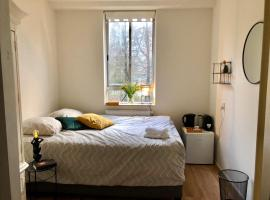 Our beautiful homestay, homestay in Amsterdam