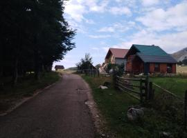 Vida, farm stay in Žabljak