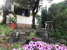 Cabaña en la naturaleza, villa in Collado-Villalba