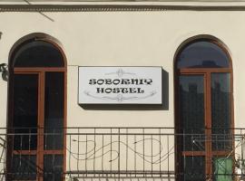 Soborniy Hostel: Lviv'de bir hostel