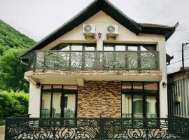 Casa Golopența, guest house in Băile Herculane