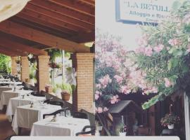 Agriturismo La Betulla, farm stay in Brezzo