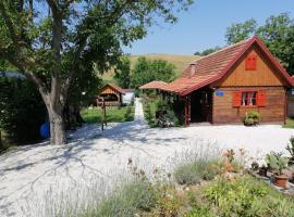 Pod orehom drvena kuća i sauna, budget hotel in Krapina
