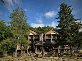 Stonebrook Lodge Bryson City, hotel v destinaci Bryson City