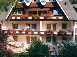 Aparthotel Jägerhaus, hotel in Willingen