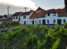 Vinný sklep Kraví Hora Bořetice, prázdninový dům v Bořeticích