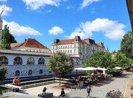 Petkovšek - River view, zasebna nastanitev v mestu Ljubljana