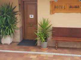 Hotel Alina, hotel in Cangas del Narcea