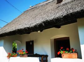 Country house Balaton, country house in Paloznak