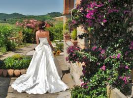 LA ROSA DEI VESPUCCI Luxury Historic Apartments, hotel in Greve in Chianti