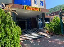 Кипарис Ольгинка, отель в Ольгинке
