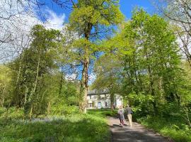 Blackhill Woods, budget hotel in Abbeyleix
