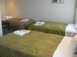 Hirata Maple Hotel - Vacation STAY 86973、出雲市のホテル