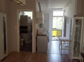 Bagoly apartman, apartment in Balatonfüred