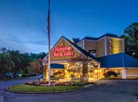 Hampton Inn & Suites Pigeon Forge On The Parkway, hotel in Pigeon Forge