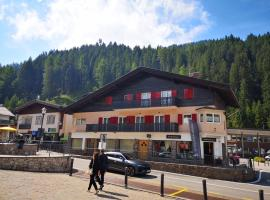 Appartamento Angelo, apartment in Selva di Val Gardena