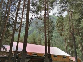 ЭЛЬБРУС МАРАЛ, hotel in Elbrus