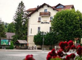 Hotel Bitoraj Fužine, room in Fužine