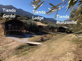 Cortijo Dos Santos, luxury tent in Valle de Abdalagís
