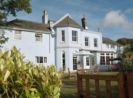 amber house hotel, guest house in Paignton