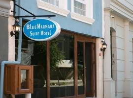 BLUE MARMARA SUITES, hotel near Column of Constantine, Istanbul