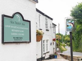 The Sea Trout Inn, hotel in Totnes