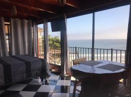 Hotel Pingüino en la Roca, hotel en Viña del Mar